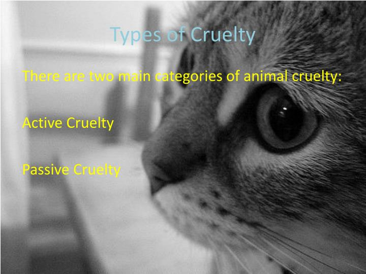 Types of cruelty