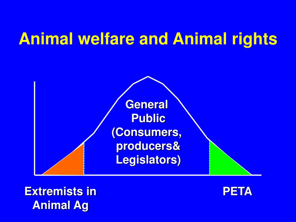 Animal welfare and Animal rights