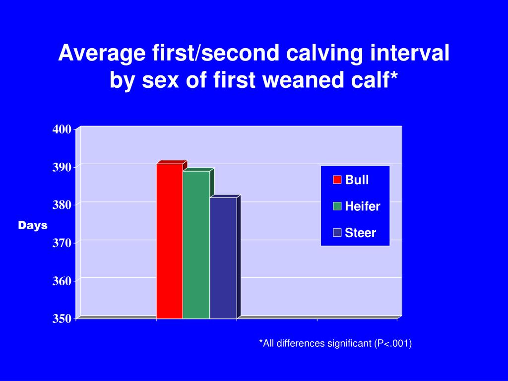 Average first/second calving interval by sex of first weaned calf*