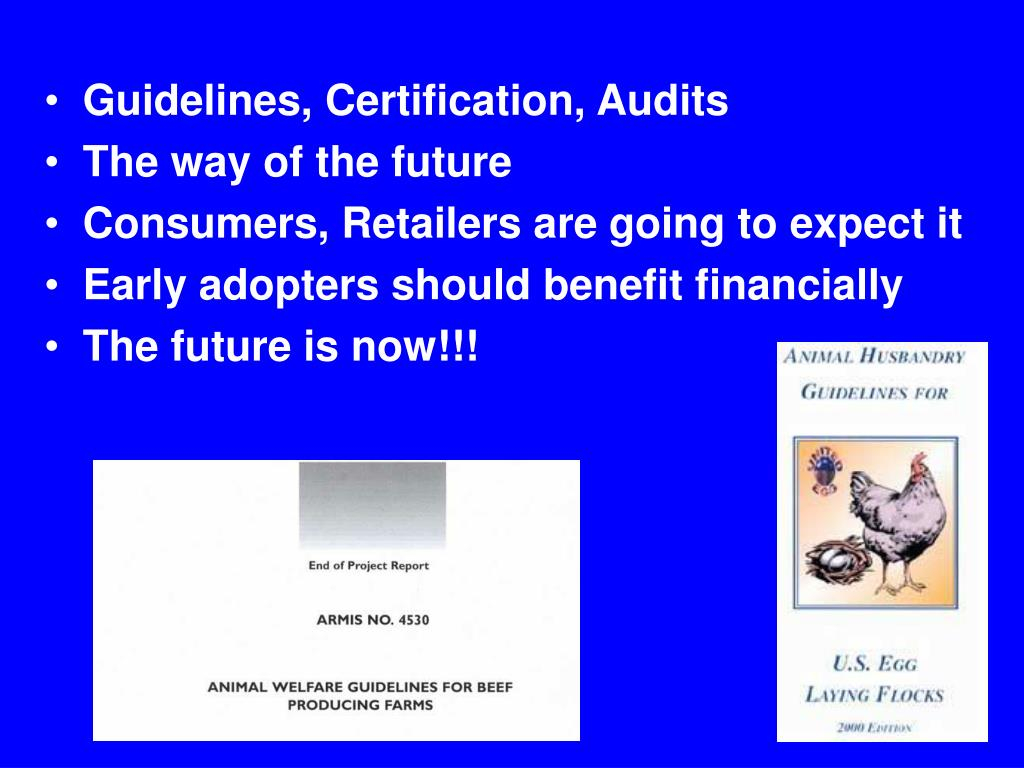 Guidelines, Certification, Audits