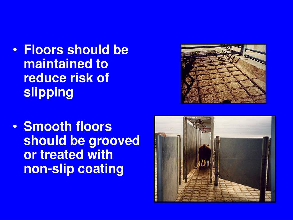 Floors should be maintained to reduce risk of slipping