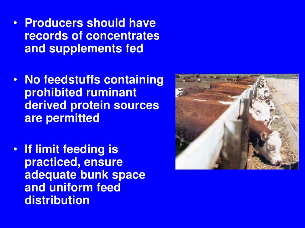 Producers should have records of concentrates and supplements fed