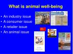 what is animal well being