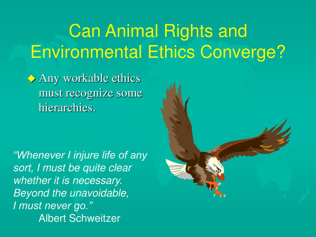 Can Animal Rights and Environmental Ethics Converge?