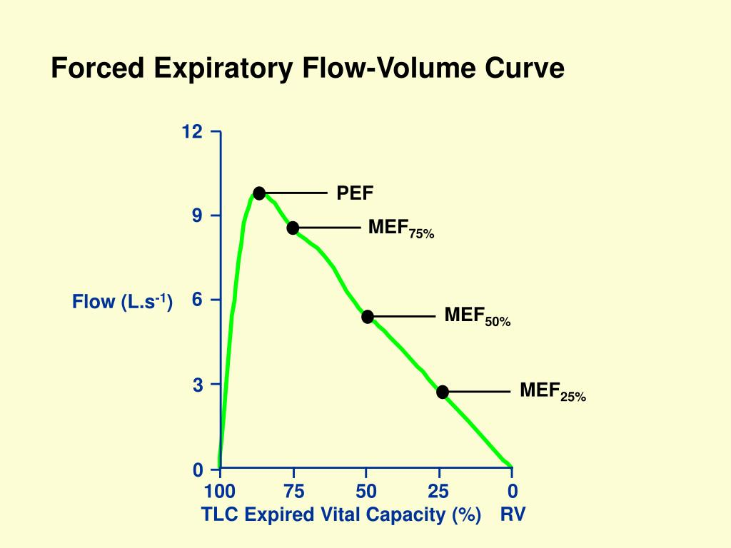 Forced Expiratory Flow-Volume Curve