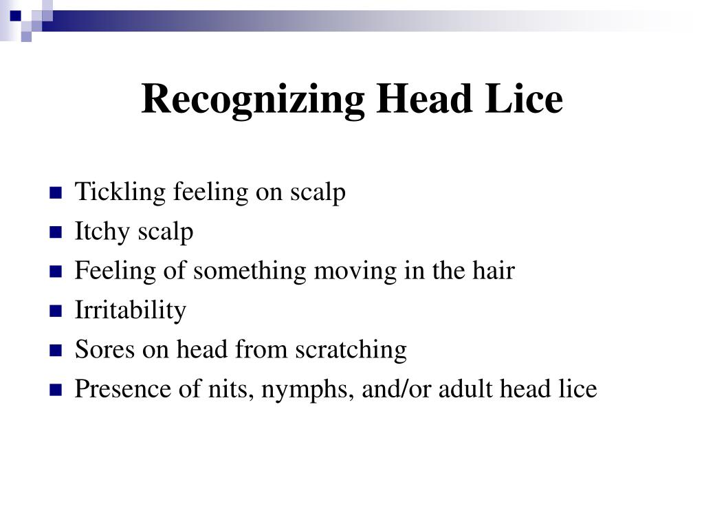 Recognizing Head Lice
