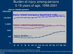 burden of injury among persons 5 19 years of age 1998 2001
