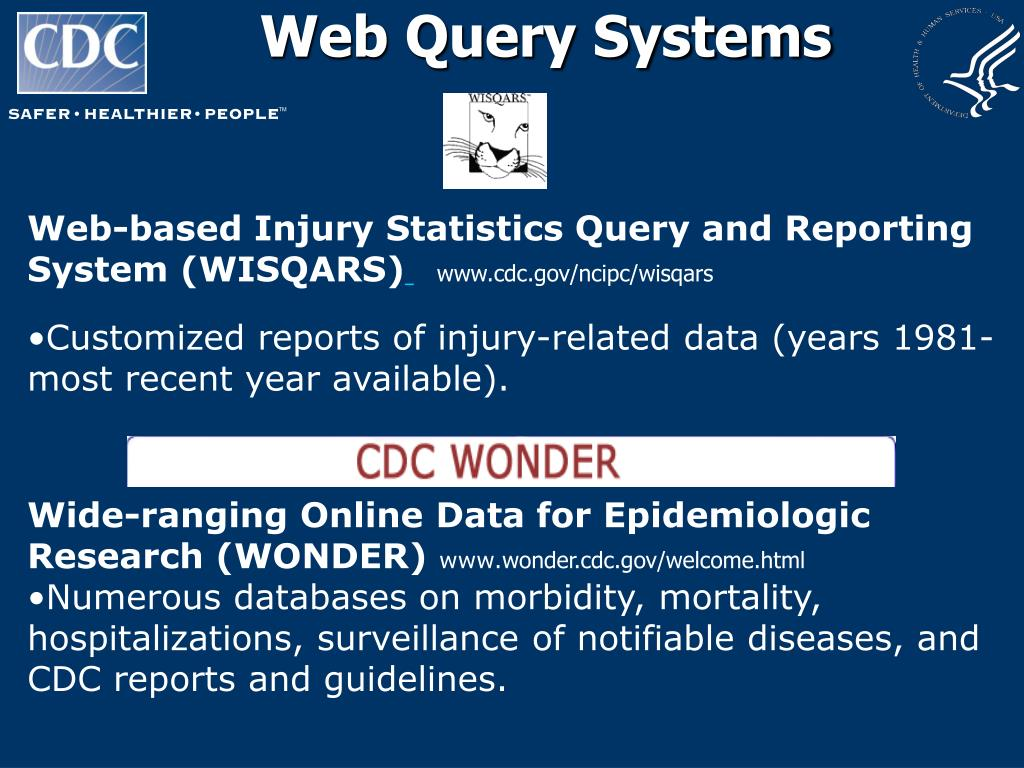 Web Query Systems