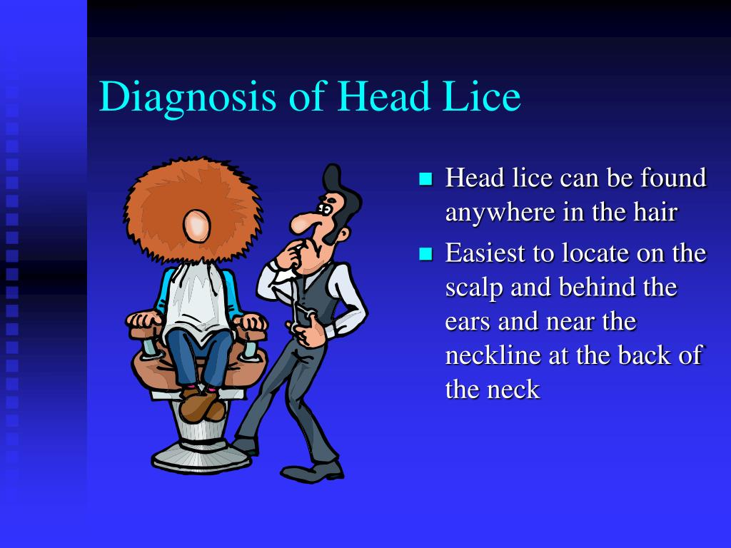 Diagnosis of Head Lice