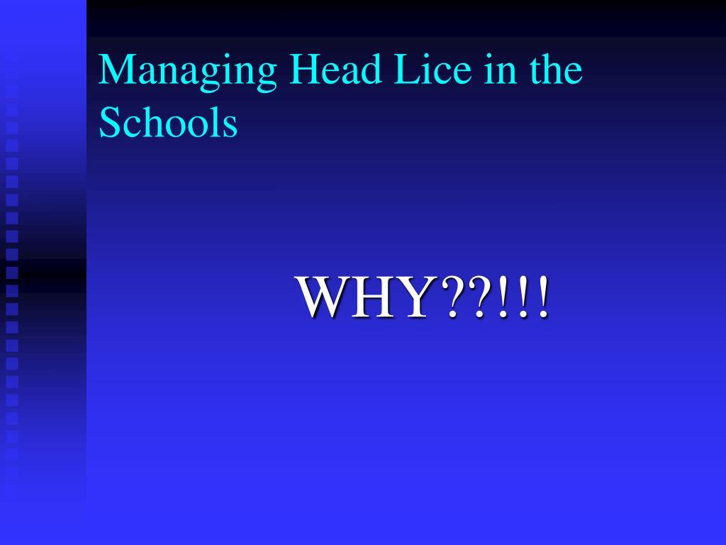 Managing Head Lice in the Schools