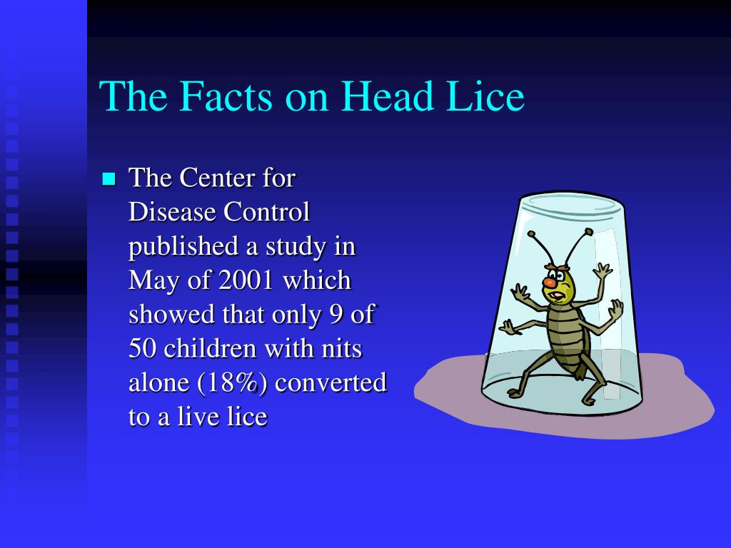 The Facts on Head Lice