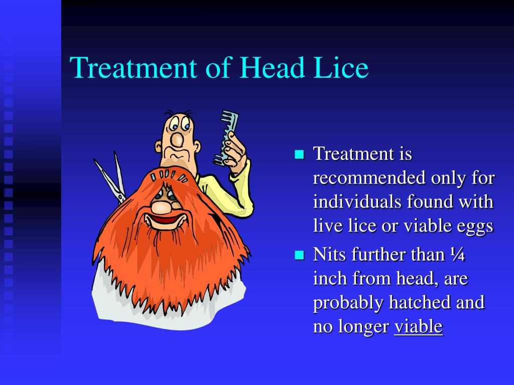 Treatment of Head Lice