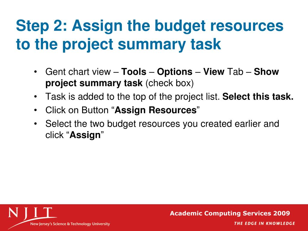 Step 2: Assign the budget resources to the project summary task