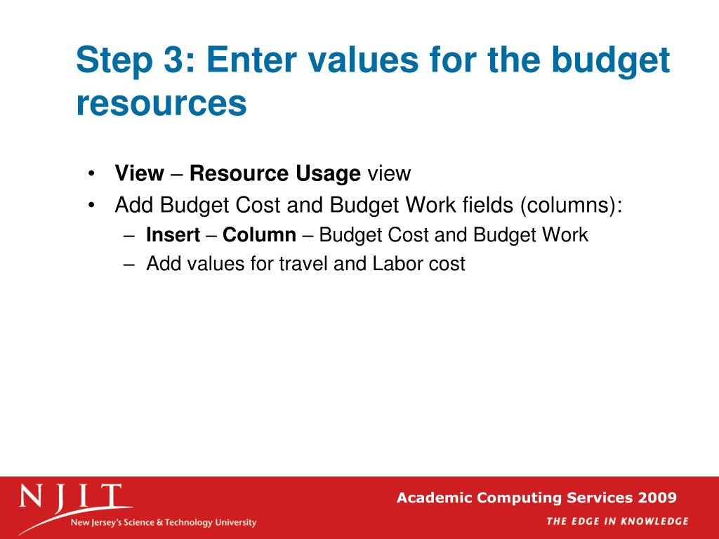 Step 3: Enter values for the budget resources