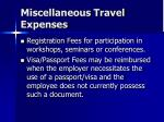 miscellaneous travel expenses43