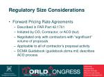 regulatory size considerations17