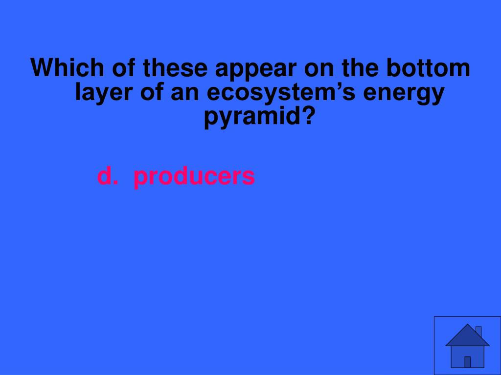 Which of these appear on the bottom layer of an ecosystem's energy pyramid?