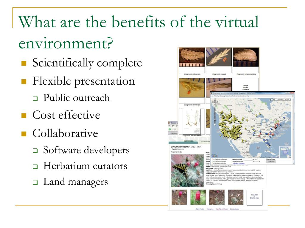 What are the benefits of the virtual environment?