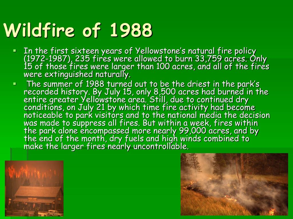 Wildfire of 1988