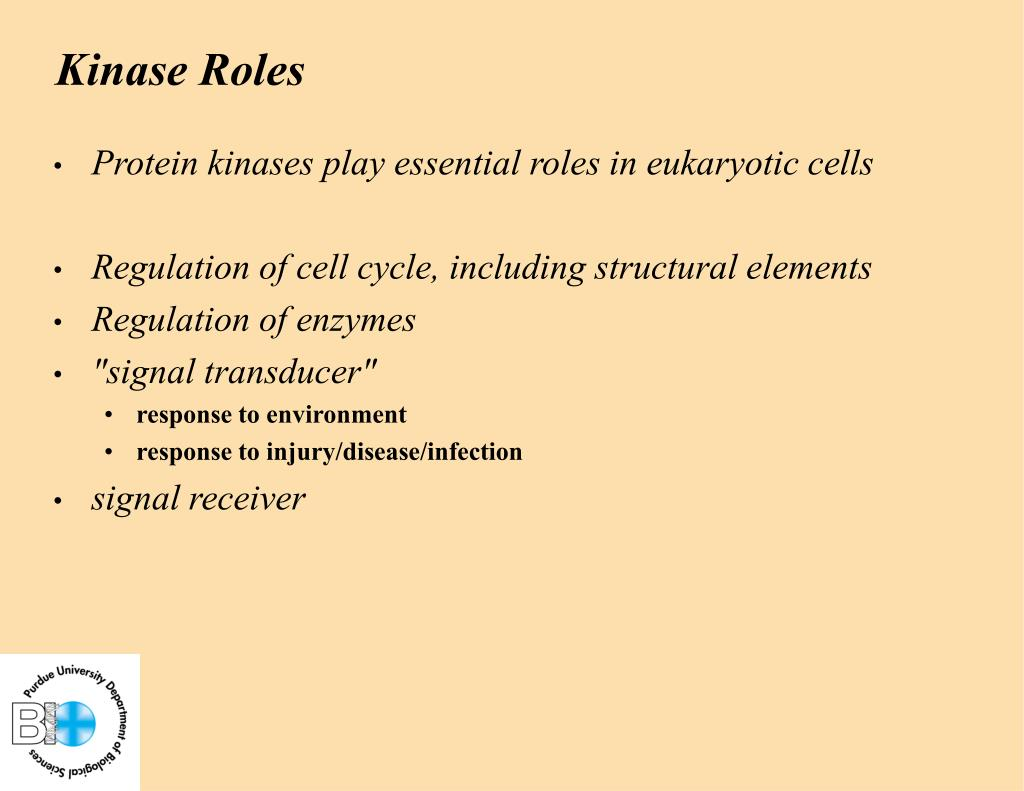 Kinase Roles