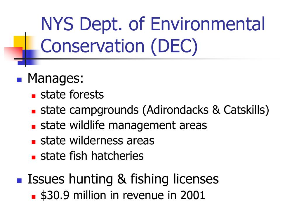 NYS Dept. of Environmental Conservation (DEC)
