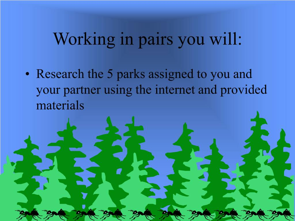 Working in pairs you will: