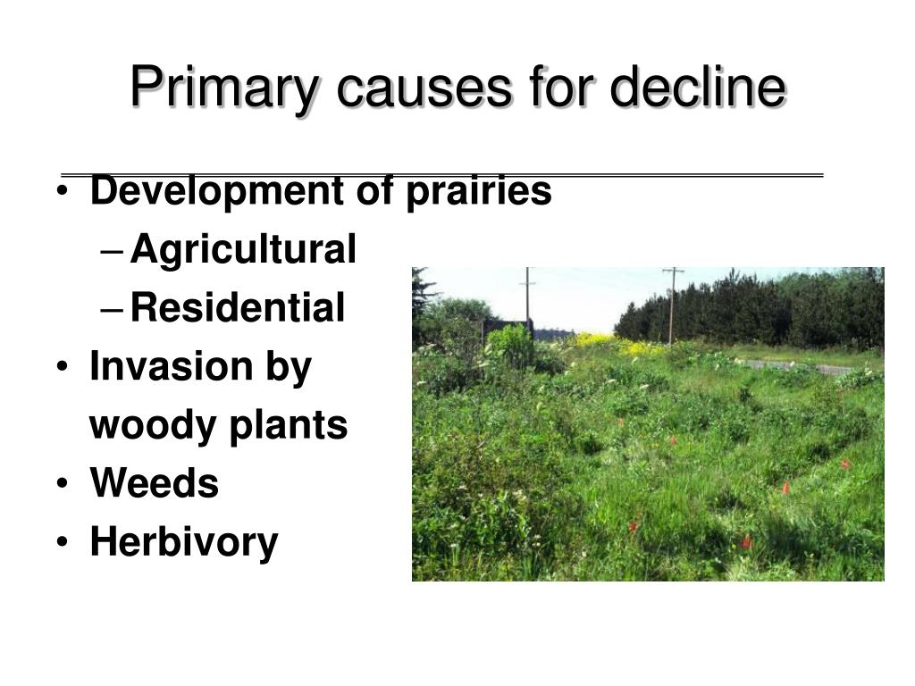 Primary causes for decline