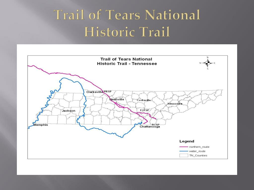 trail of ters with Trail Of Tears Presentation on 11totc0310 moreover Pearidge in addition Writers Tears Pot Still Blended Irish Whiskey 70cl as well File datura wrightii closeup besides Np Kornati I Pp Telascica En.