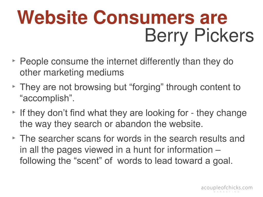 Website Consumers are