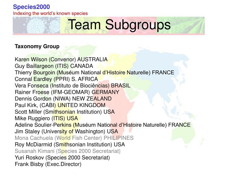 Team Subgroups