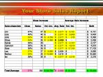 your store sales report22