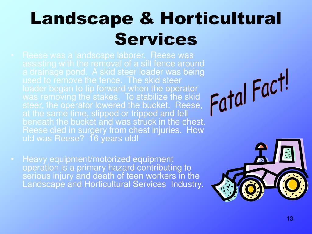 Landscape & Horticultural Services