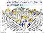 visualization of association rules in sgi mineset 3 0