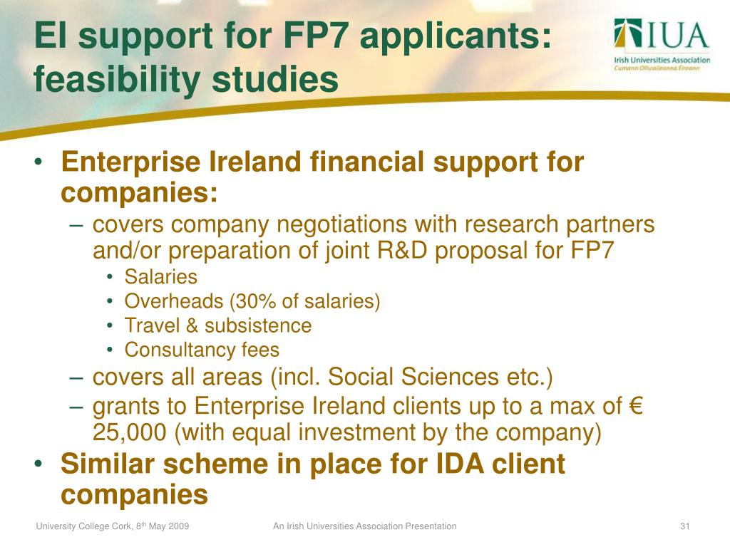 Enterprise Ireland financial support for companies: