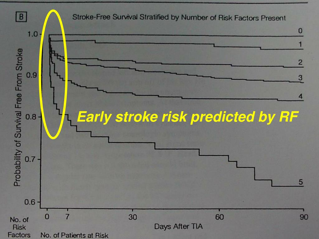 Early stroke risk predicted by RF
