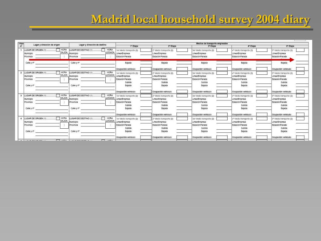 Madrid local household survey 2004 diary