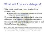 what will i do as a delegate