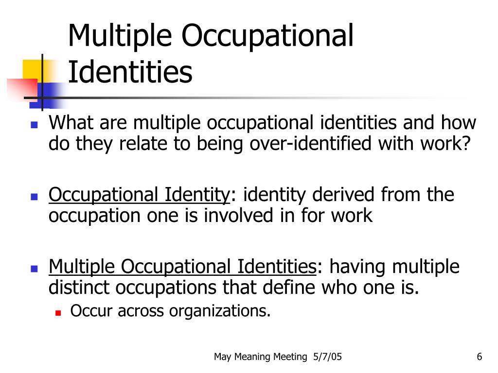 Multiple Occupational Identities
