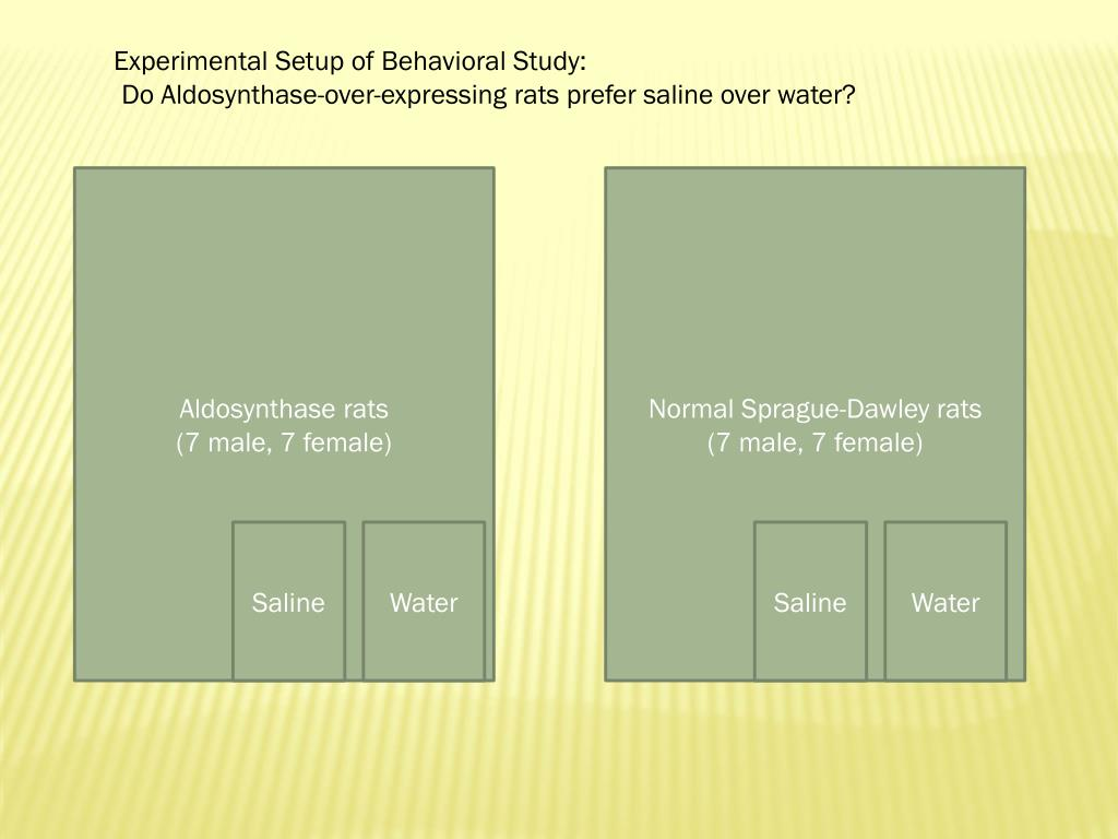 Experimental Setup of Behavioral Study:
