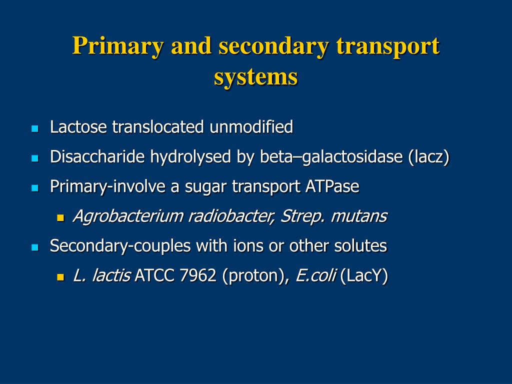 Primary and secondary transport systems