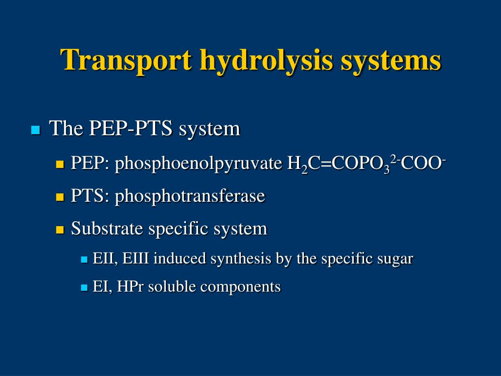 Transport hydrolysis systems