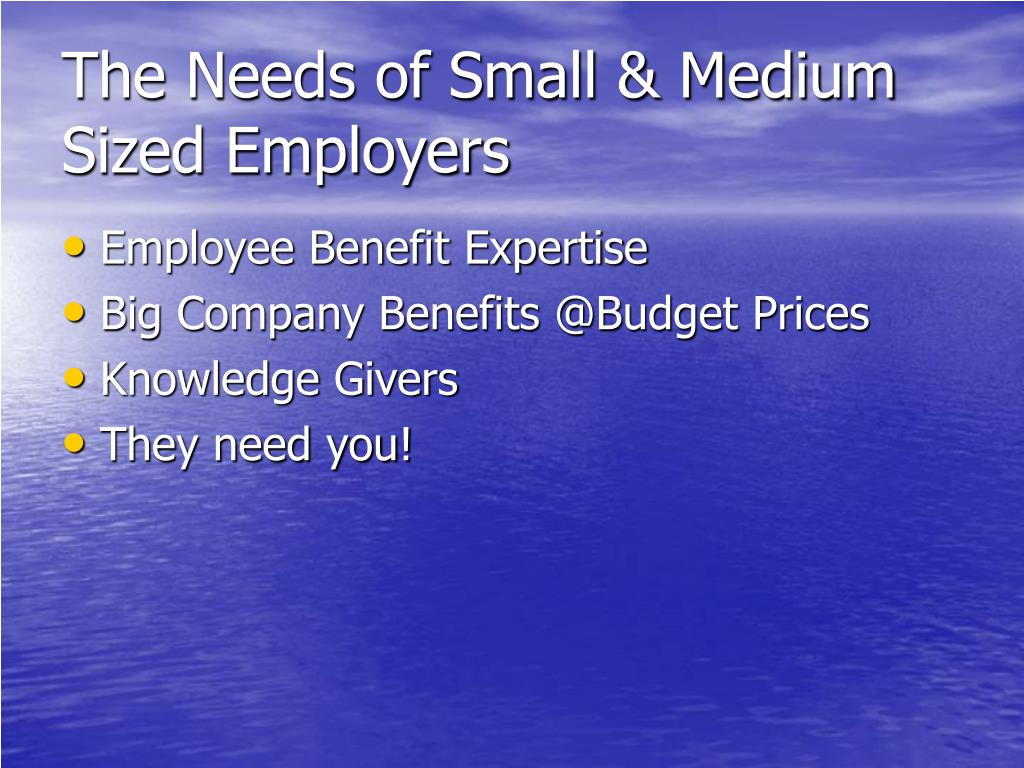 The Needs of Small & Medium Sized Employers