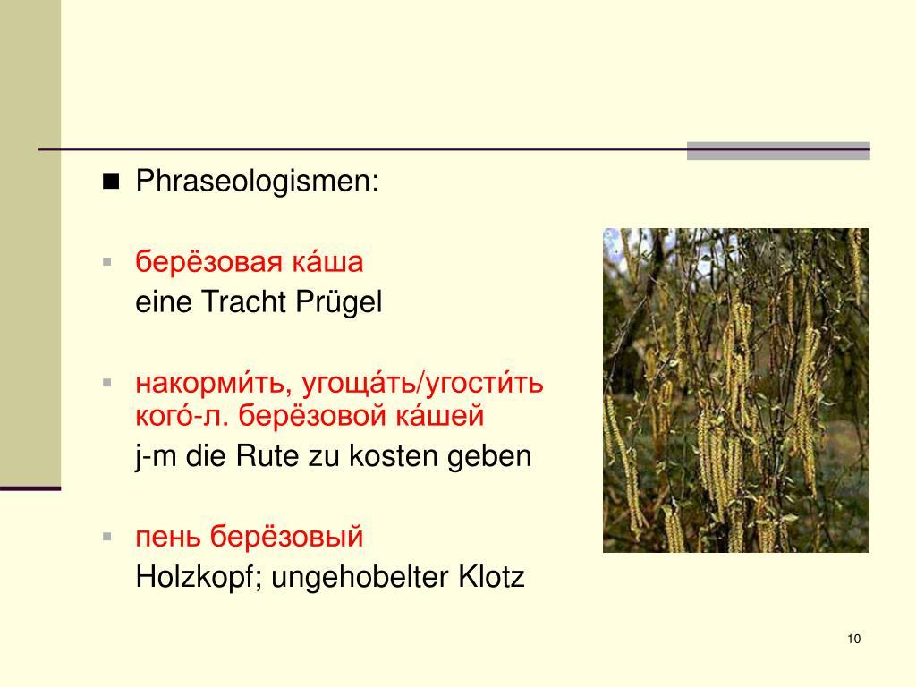 Phraseologismen: