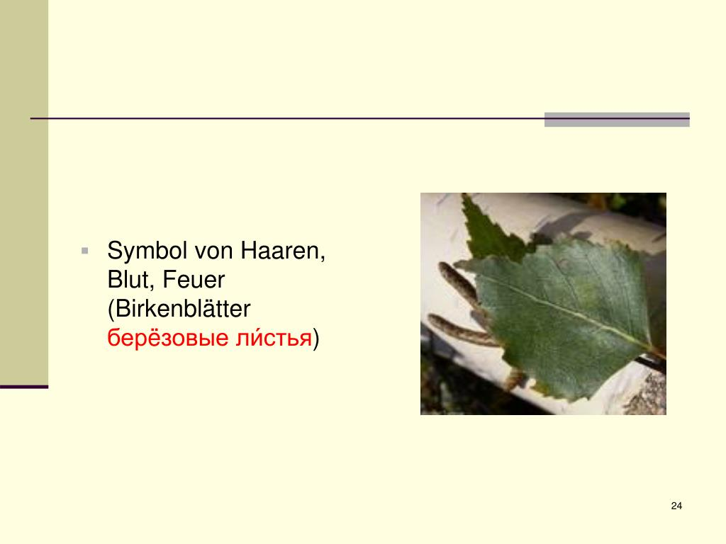 Symbol von Haaren, Blut, Feuer (Birkenblätter