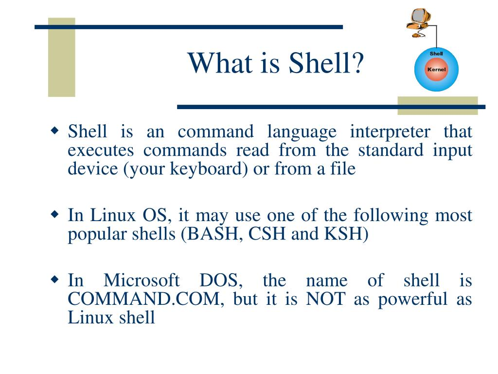What is Shell?