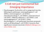 e coli not just commensal but emerging importance