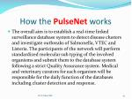 how the pulsenet works
