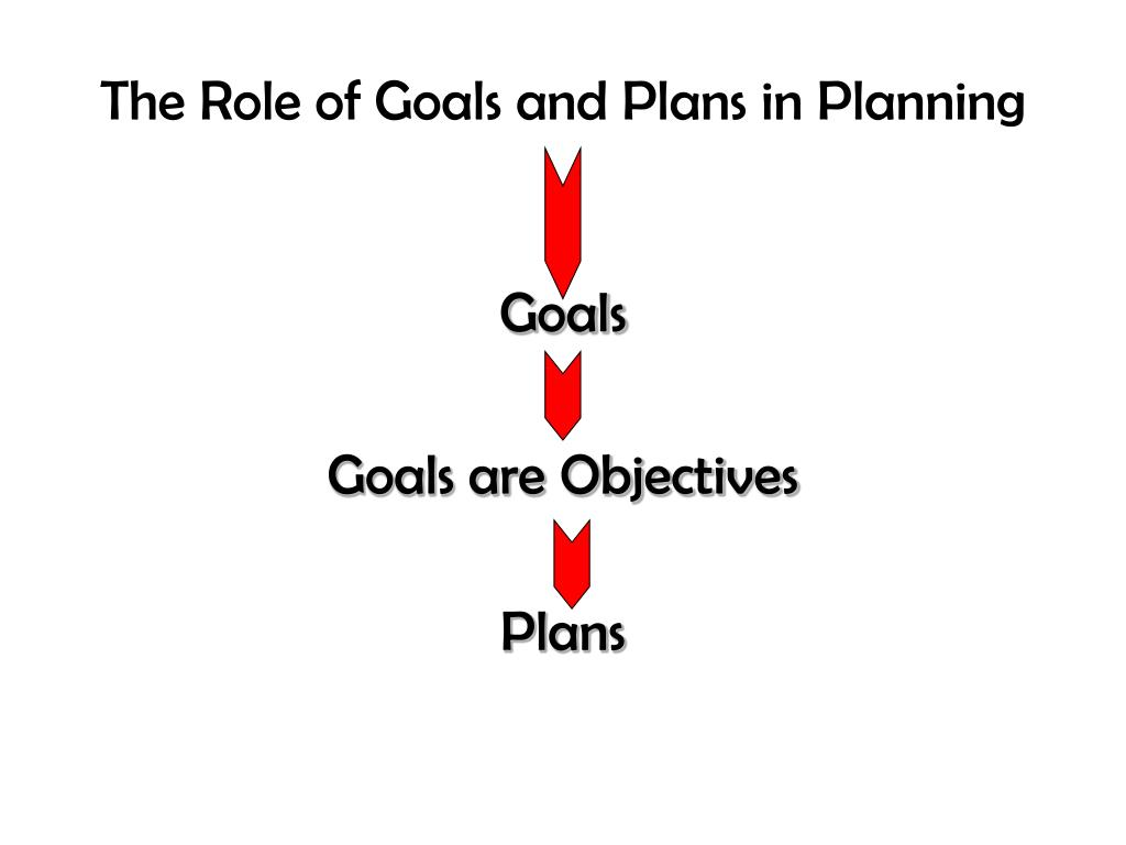 The Role of Goals and Plans in Planning