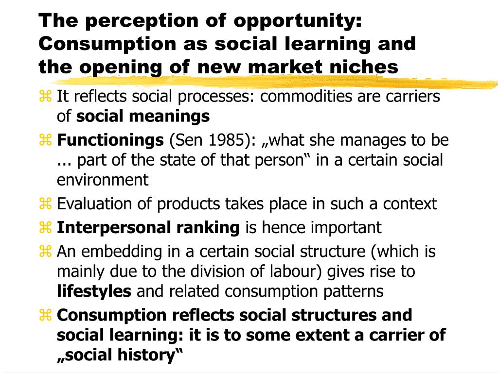 The perception of opportunity: Consumption as social learning and the opening of new market niches