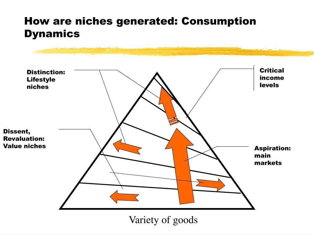 How are niches generated: Consumption Dynamics